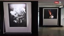 Выставка «Погружение»