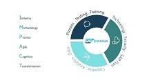 IBM Impact — индустриальные решения для S/4HANA