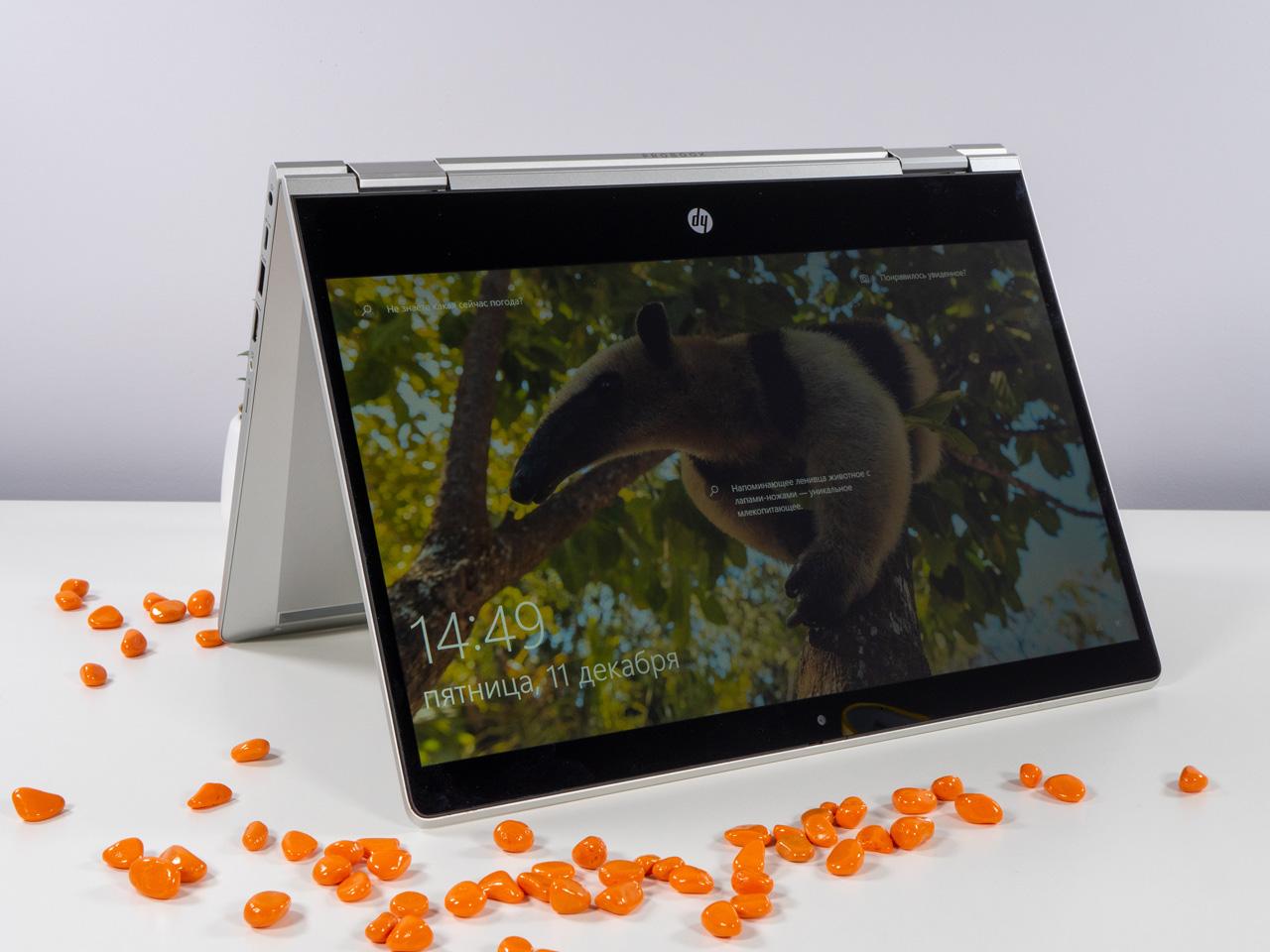 Обзор ноутбука HP ProBook x360 435 G7: деловой трансформер
