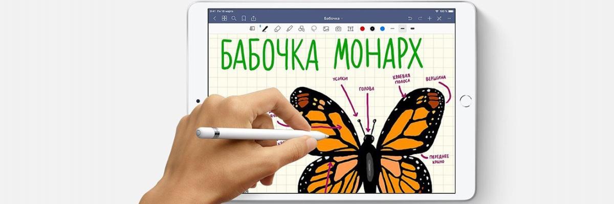 Первый взгляд на новые iPad Air и iPad mini