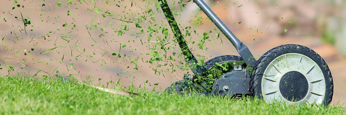 Триммер или газонокосилка — что выбрать для дачи?