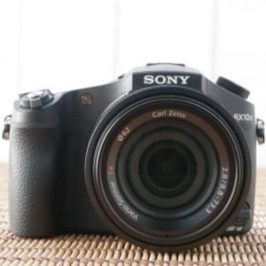 Обзор фотокамеры Sony DSC-RX10 II: универсал класса люкс